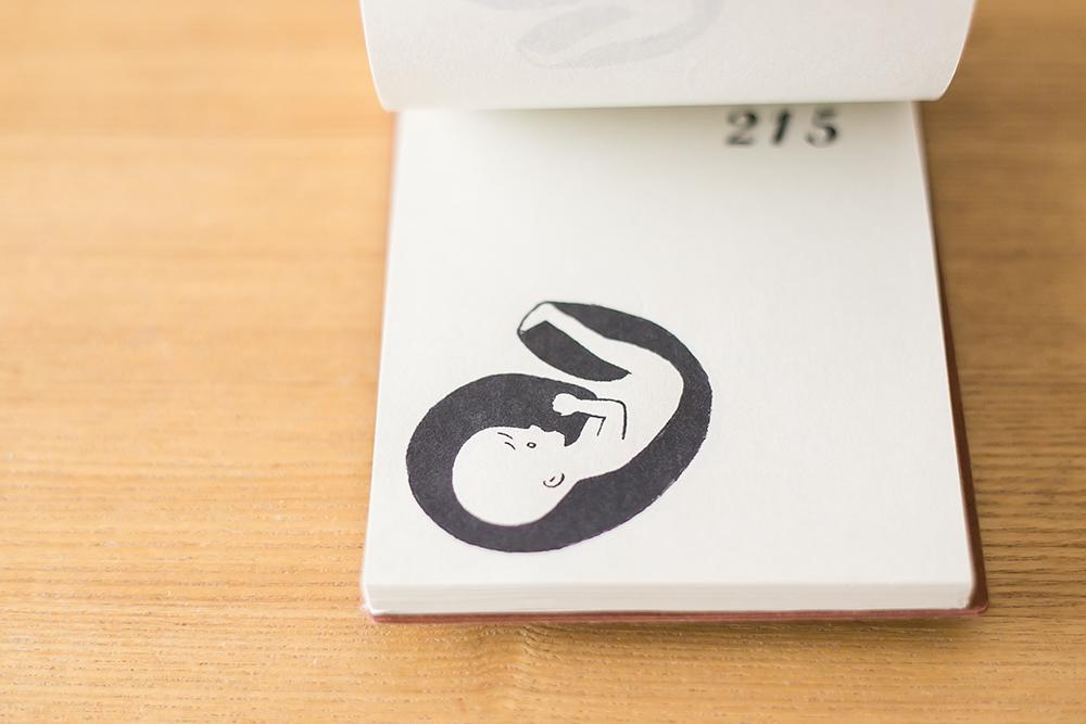 妊娠日めくりカレンダー
