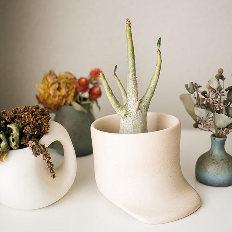 mushimegane books.の器と植物たち